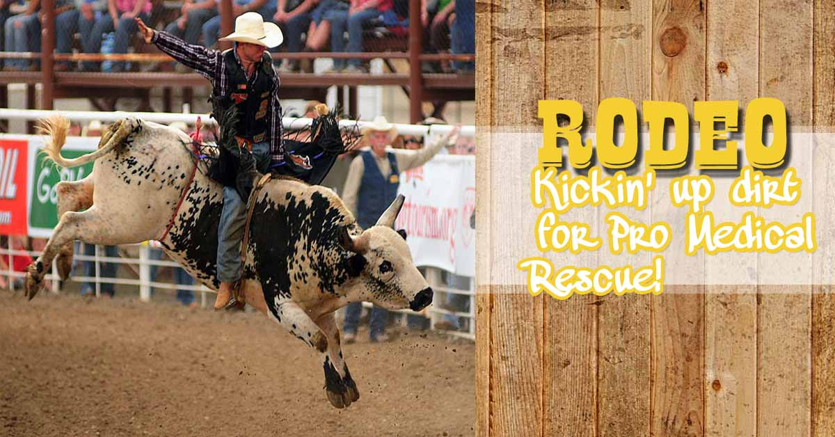 RODEO promedical4
